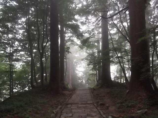 霧にけむる羽黒山参道