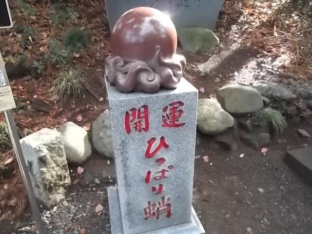 高尾山 開運ひっぱり蛸