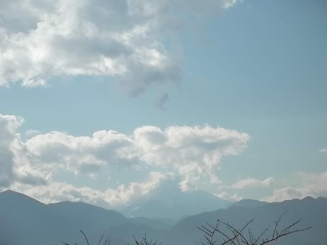 高尾山から富士山を望む
