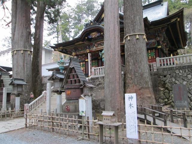 三峯神社 ご神木