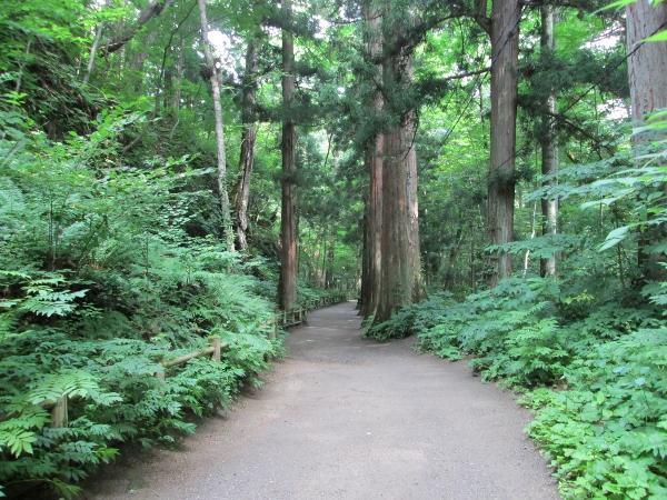 十和田神社参道