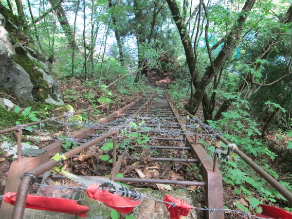 十和田神社 鉄梯子