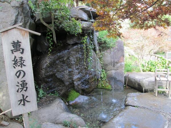 萬緑の湧水