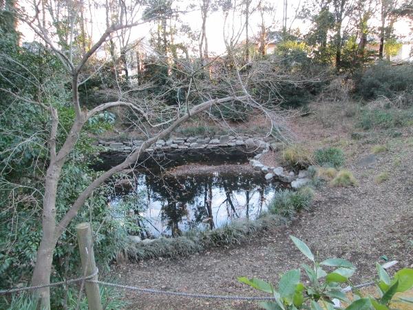 みひかりの池