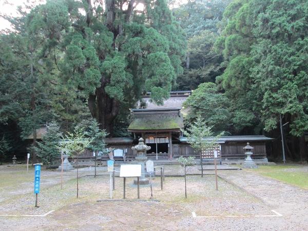 若狭姫神社社殿